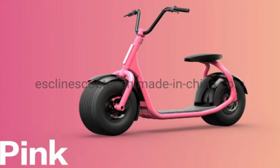 800W&1200W Balance High Quality Self Stand Aluminium IC Card Key Scooter pictures & photos