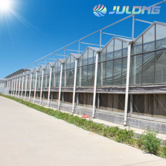 Intelligent Glass Greenhouse with Commercial Hydroponic Growing Systems for Tomato Lettuce Strawberry