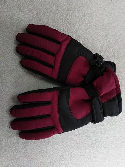 Adult Ski Glove/Adult Winter Glove/Winter Bike Glove/Moto Bike Glove/Detox Glove/Eco Finish Glove/Oekotex Glove/I-Touch Screen Glove/Waterproof Glove