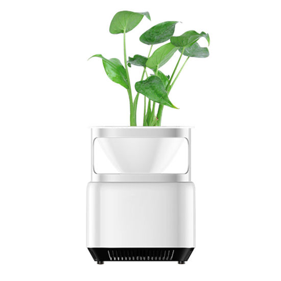 Amazon Top Seller 2020 Portable Air Purifier HEPA Filter Negative Ion Generator Air Purification System Ionizer for Plant and Flower