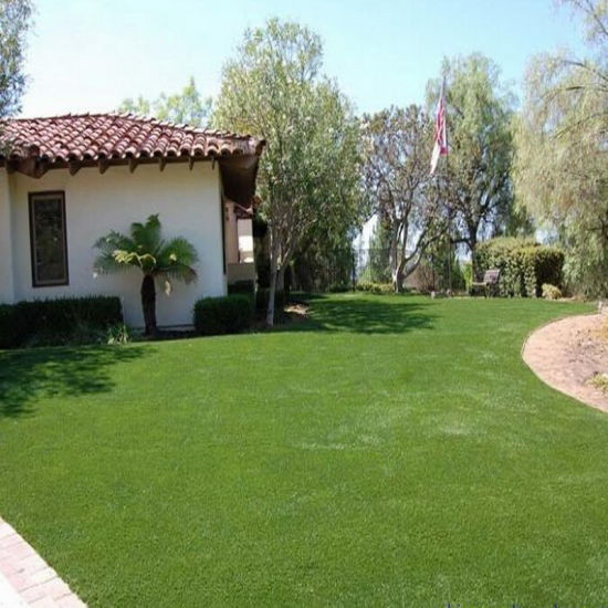 Chinese Synthetic Turf Nature Grass pictures & photos