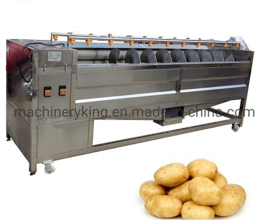 Kohlrabi Celeriac Sweet Potato Beetroot Spiral Drum Potato Abrasive Roller Peeler Peeling Polishing Machine