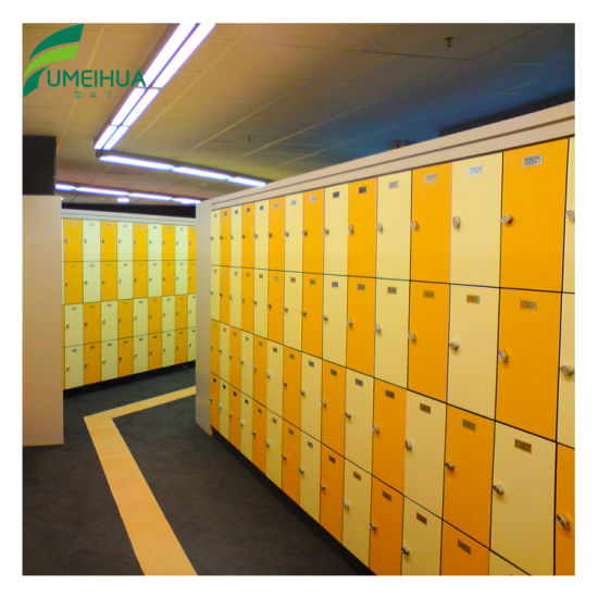 Fumeihua Phenolic Decorative Storage Locker pictures & photos