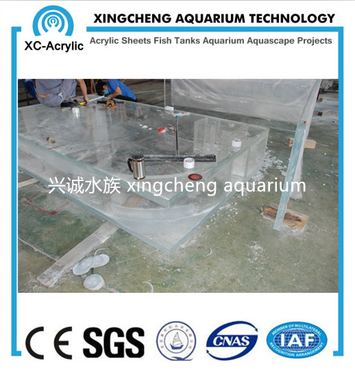 Customized Clear Acrylic Aquarium Fish Tank pictures & photos