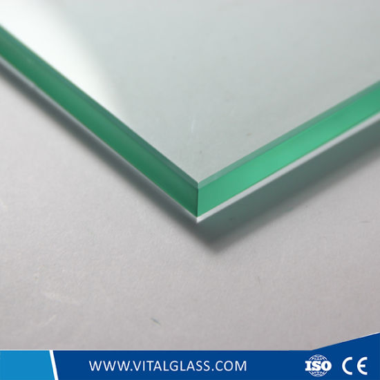 3mm, 4mm, 5mm, 6mm Acid Etched Glass/Tempered Glass/Frosted Glass pictures & photos