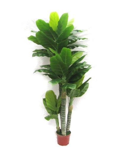 Best Selling Artificial Plants of Banana Tree Gu-FF-Banana-17-2 pictures & photos