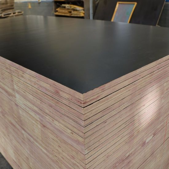 1200X1800mm Australia Standard Film Faced Plywood F17 Formply, 17mm Construction Ply Wood