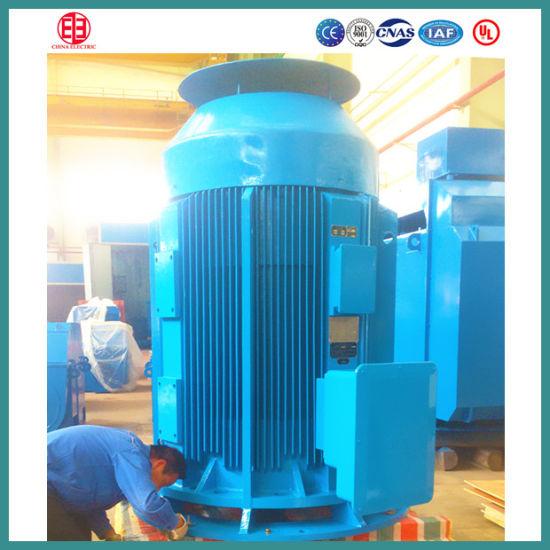 Vertical Solid Shaft Motor Motor
