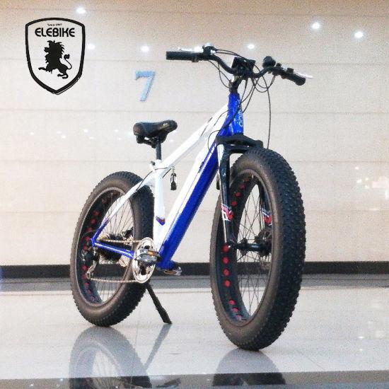 Fat electric Bike with 26'' Wheel