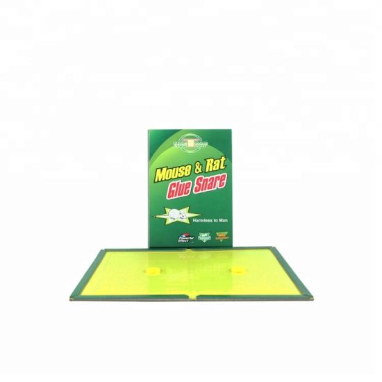 Eco-Friendly Large Yellow Paper Lure Books Adhesive Rat