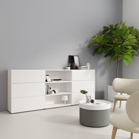 Modern Home Furniture Storage Cabinet 1-2 Doors (HC-Besimple)