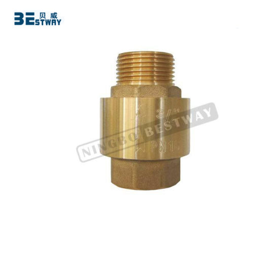 Male Thread and Female Thread Brass Check Valve (BW-C13) pictures & photos