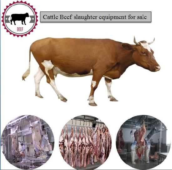 Automatic Cattle Cow Slaughterhouse Equipment