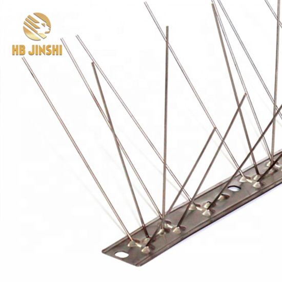 Factory Direct Hot Sale Full 304 Stainless Steel Sticks Anti Bird Spikes
