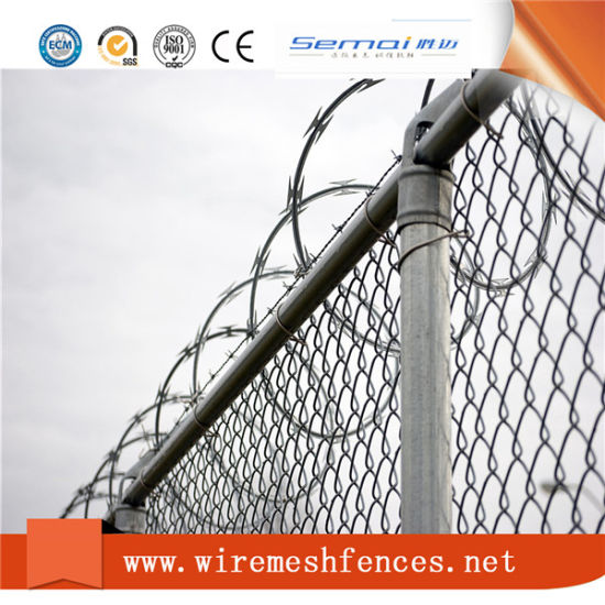 China Security Fencing Stainless Steel Razor Barbed Wire - China ...