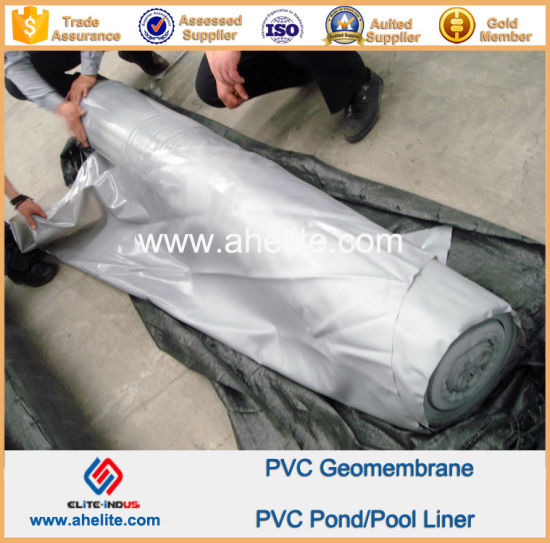 UV Stabilized High Density Polyethylene HDPE Geomembranes pictures & photos