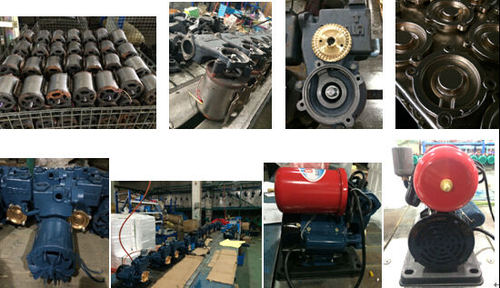 Gp-125 0.25kw/0.3HP Electric Water Pump 220V/110V for Iraq Market pictures & photos