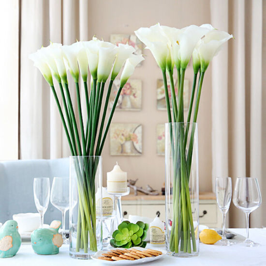 China Home Decoration Tall Glass Vases Cylinder Shape Flower Glass
