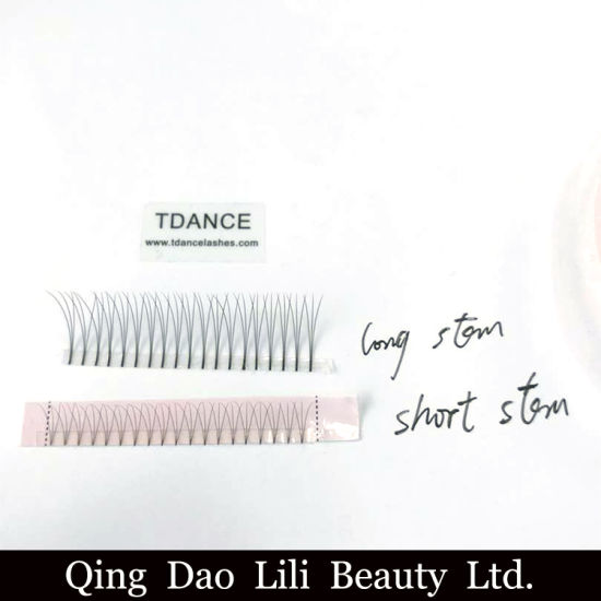 f42752a2ab7 Wholesale Pre Made Fans Volume Lash of Eyelashes Extensions pictures &  photos