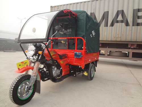 Taxi Tricycle for Africa Market Motorcycle pictures & photos