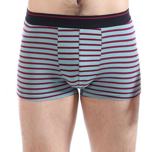 Cheap Customize Personal Brand Logo Striped Men Boxers for Men