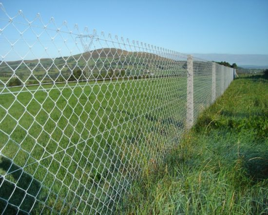 China Galvanized Sheep Wire Mesh Portable Fence Panel, Welded Mesh