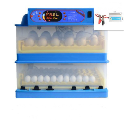 112 Egg Incubator Full Automatic Mini Egg Incubator Home Use pictures & photos