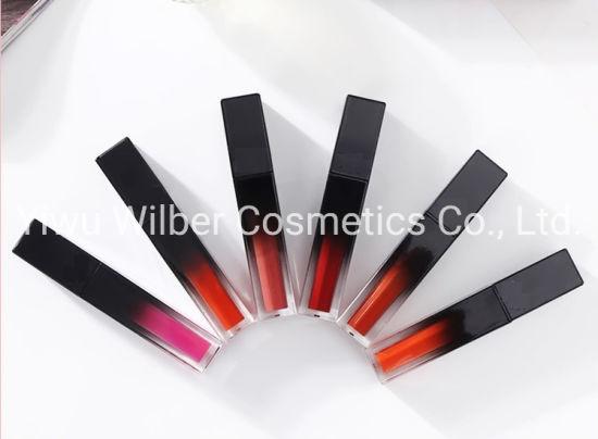 Matte Long Lasting Lipgloss Water-Proof Makeup