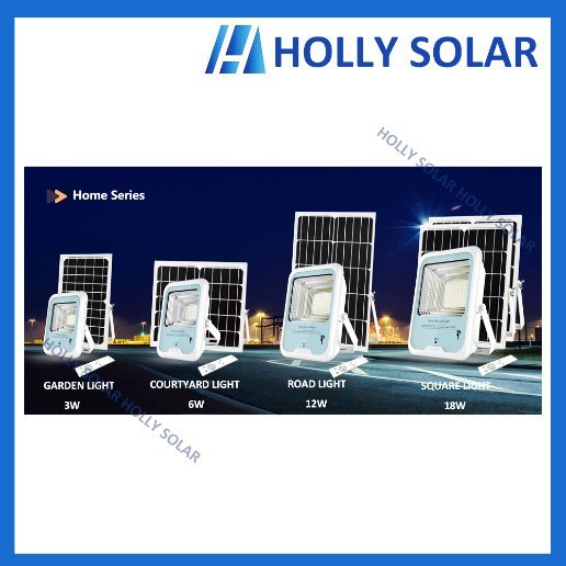 Solar LED Light Floodlight for Garden Street Courtyard Yard Factory pictures & photos