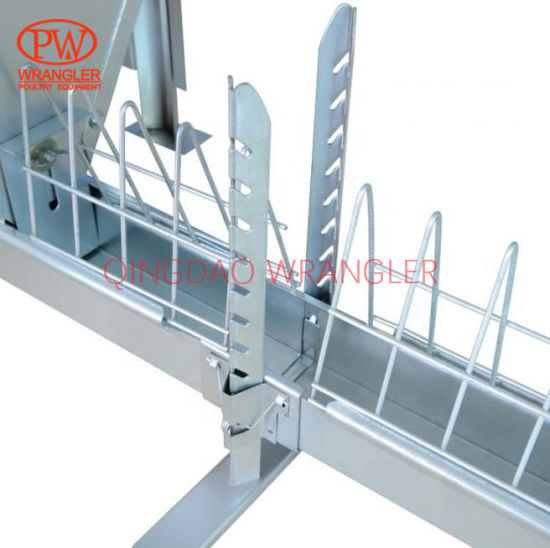 Poultry Breeder House Equipment Open Trough Chain Feeding Line System