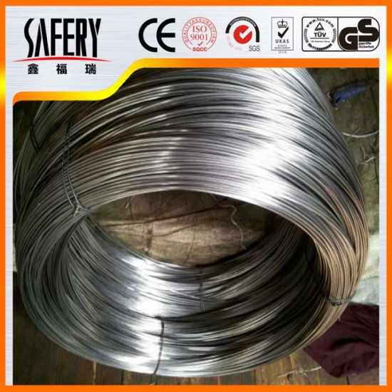 High Quanlity Galvanized Steel Wire Spring