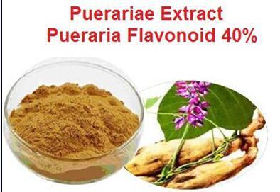 15% of Puerariae