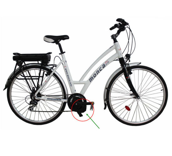 200W MID Driving Motor Electric Bike Bicycle E-Bicycle E Scooter City 36V Rear Rack Li Battery