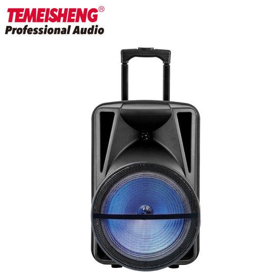 Temeisheng 12 Inch Wireless PA System Trolley Speaker