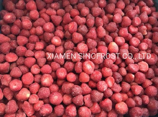 IQF Whole Strawberries, Frozen Strawberry Puree, Frozen Strawberry with Sugar, 4+1 Frozen Strawberry, IQF Diced Strawberries, Honey Variety, Grade a, a+B, B