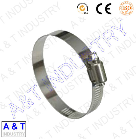 Germany/America Type Professional Hose Clamp with High Quality pictures & photos