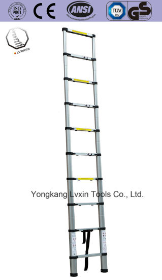Professional 9 Steps Aluminum Extension Ladder