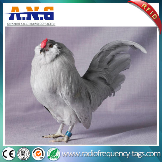 China 125kHz Hitag S256 RFID Tag as Animal Foot Ring - China