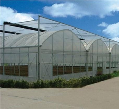 Farming/Garden Multi-Span Plastic Film Greenhouses for Fruit/Flower