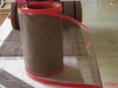 Non-Stick Heat Resistant PTFE Mesh Conveyor Belts pictures & photos
