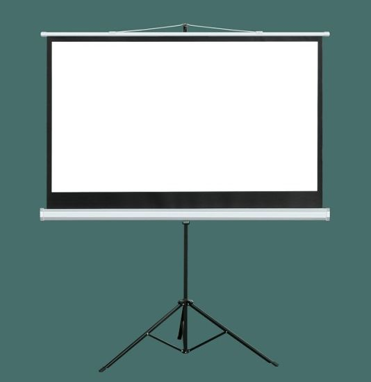 China 84 Inch Portable & Movable Office Projector Matte