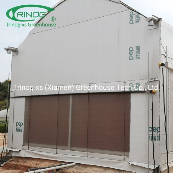 Customized light deprivation shading smart greenhouse for herb planting