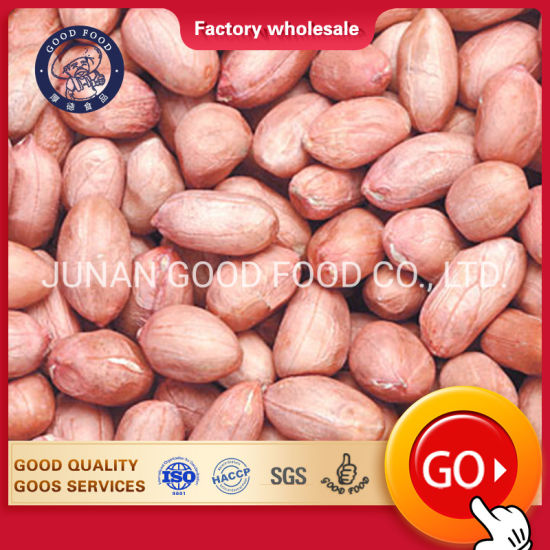 Red Peanut Raw Best Bold Quality Supplier Exporter