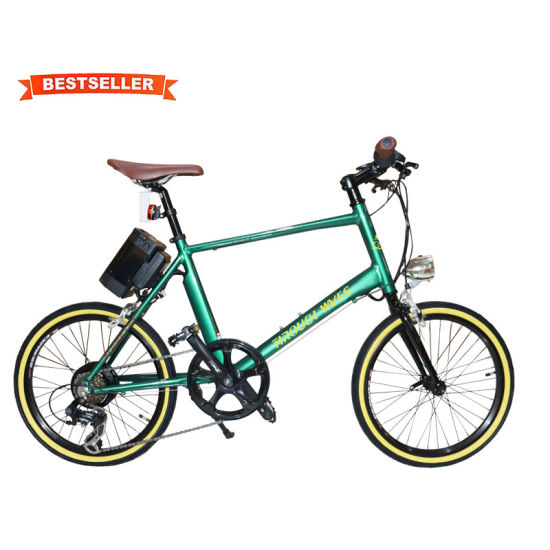Through Waves Ebike 250W 36V Long Distance Battery Retro Electric Bicycle