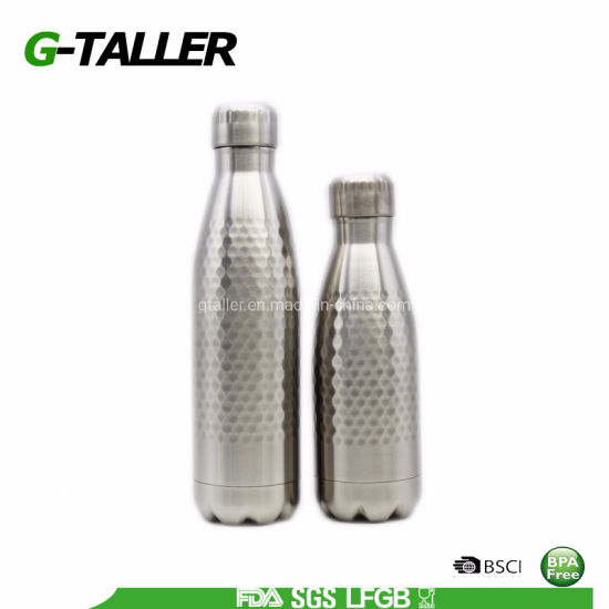 Portable Double Wall Fitness Sports Bottle