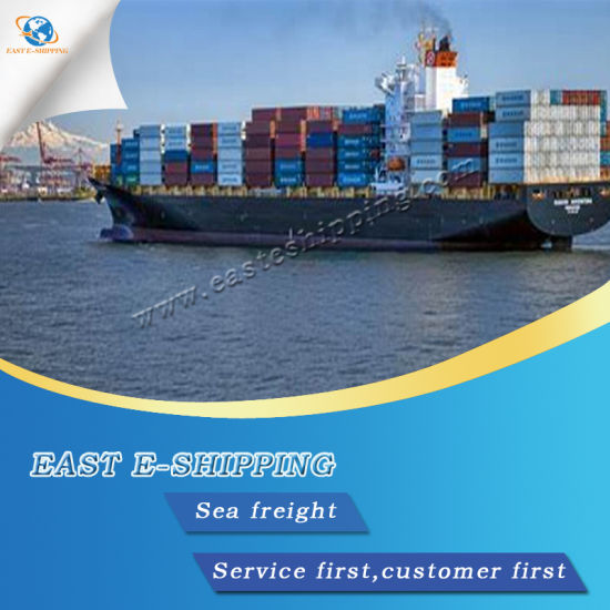 Reliable Sea Freight From China to Montreal - China Shipping