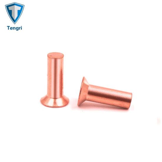 M3 x 12mm Truss Head Semi Tubular Rivet,Staniless Steel,Pack 100-piece