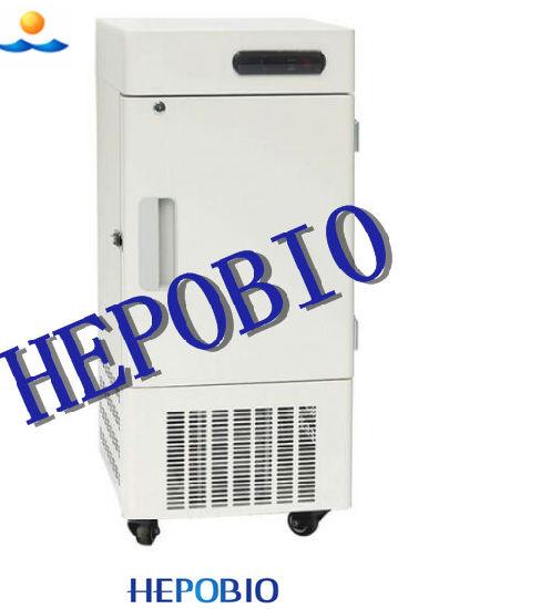 280L Good Quality Cryogenic Upright Freezer (HP-40U280)