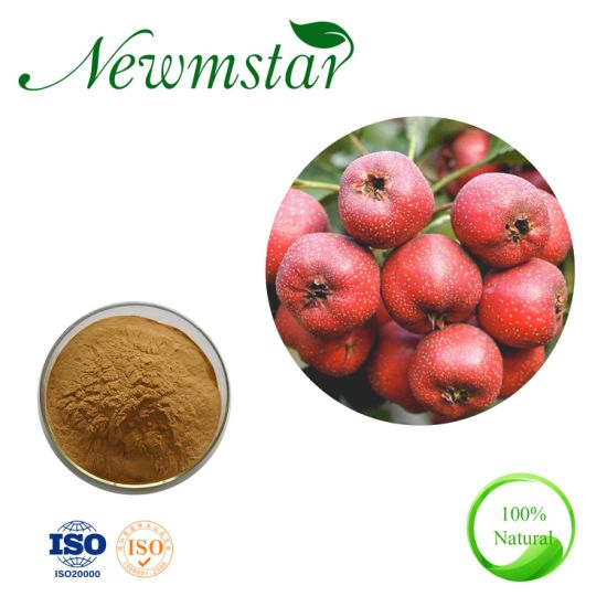 Low Blood Pressure Hawthorn Berry Extract /Hawthorn Extract /Hawthorn Powder