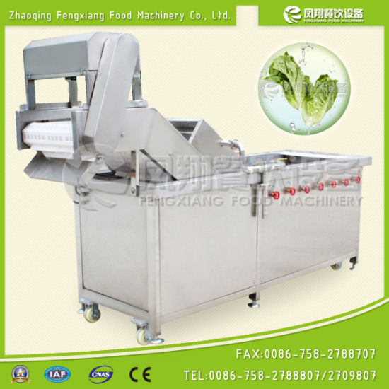 Wa-1000 Bubble Washing Machine for Vegetable & Fruits (500kg/h) pictures & photos